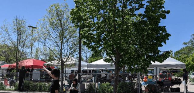 Bronx Park Farmers' Market